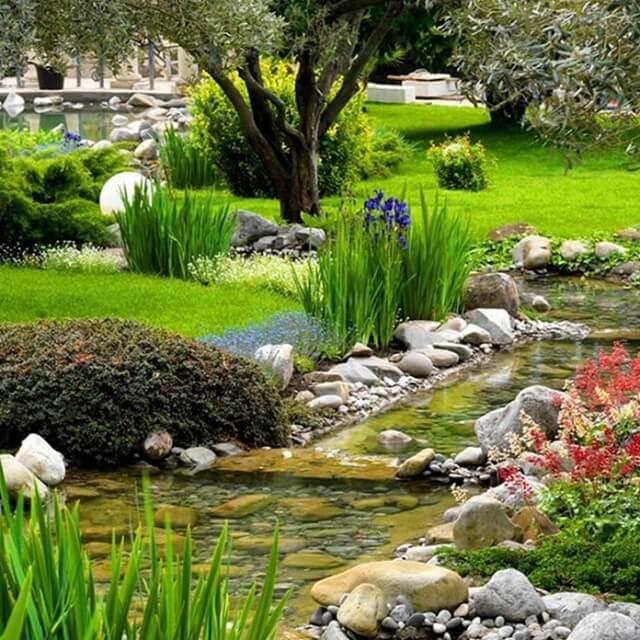 Создание пруда и озеленение участка