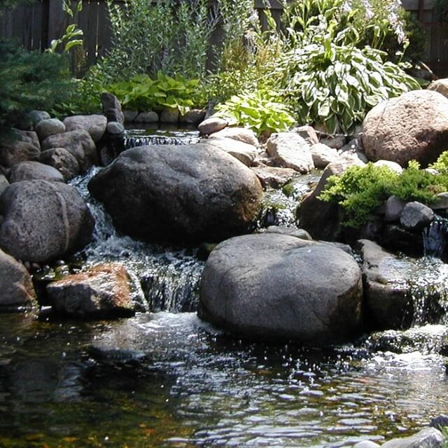 Создание полноценного водоема на участке